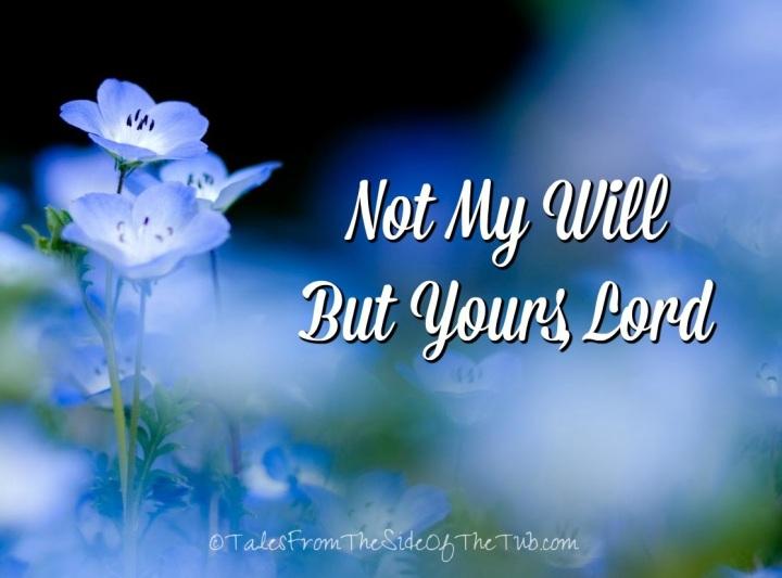 not my will 1